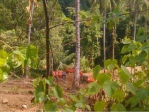 DPRD Mitra , mitra, minahasa tenggara, Sammy Pongilatan, PT Borneo Jaya Emas, alasan ratatotok