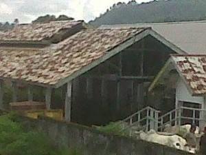 Rumah potong hewan, minahasa, Ferry Monitja,