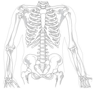 Rakhitis , tulang , kalsifikasi tulang, anak