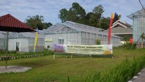 Distanakan tomohon, Ir Ervinz DH LIuw MSi , Sulawesi Utara, Show Window tomohon, Varietas Bunga Krisan