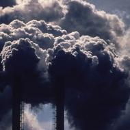 Polusi Udara,  efek Polusi Udara, Kematian Dini