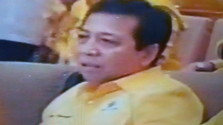 Setya Novanto, Ketua Umum Partai Golkar terpilih