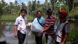 Taruna Merah Putih Mitra Salurkan Bantuan Bibit Ikan. Nila di Esandom