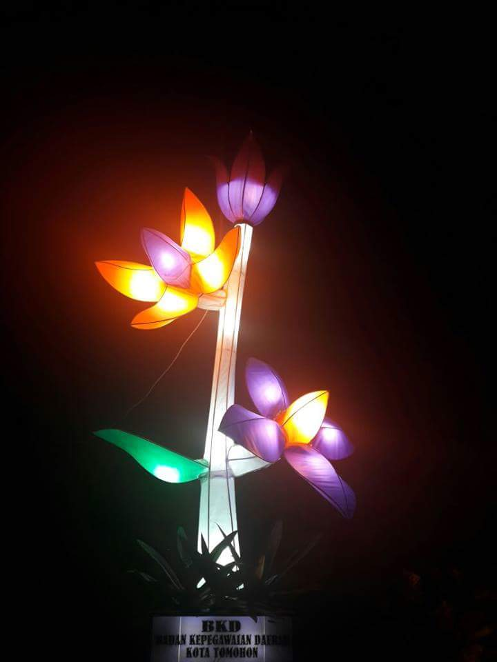 Bunga lampu hias di malam hari