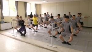 Korea Utara , Korea Selatan, Zona Demiliterisasi . Balet