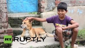 Mohit Kumar, Anjing, Susu Anjing
