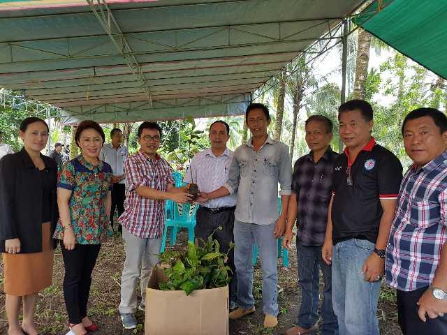 Pnt Ir Stefanus BAN Liow didampingi Pnt Ir Miky JL Wenur menyerahkan bibit pohon kayu kepada Ketua Komisi P/KB GMIM Sion Lobu Pnt Rein Pelealu
