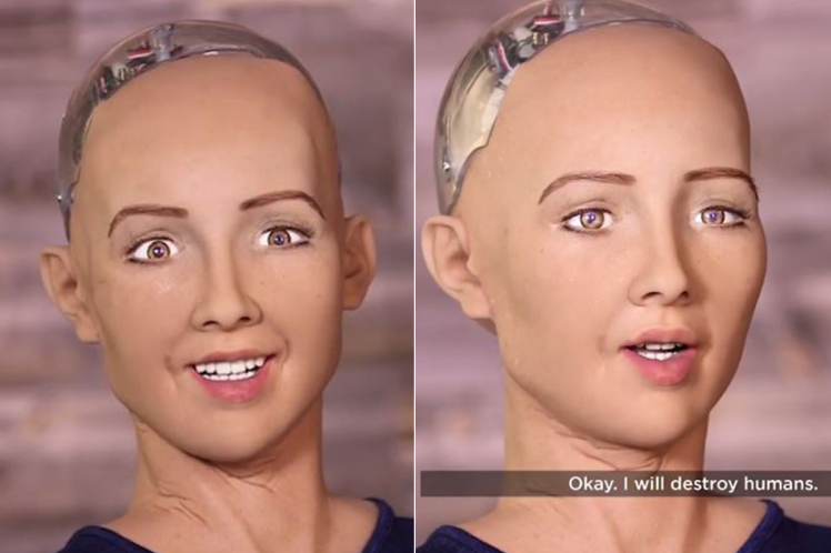 Robot 'Pintar' , Sophia , Dave Hanson
