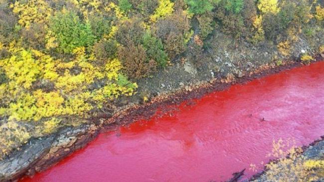 Sungai , Sungai darah, Sungai Daldykan, a Norilsk, Rusia,