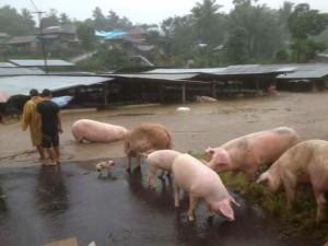 Dilanda Hujan Deras,  Bencana Kepung Sejumlah Daerah di Minahasa