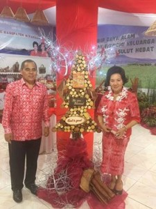 APKASI Expo 2017, Pemkab Minahasa