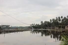 Danau Bulilin, wisata minahasa tenggara