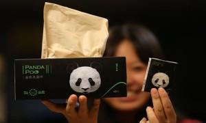 panda poo, Tisu kotoran panda, Sichuan Qianwei Fengsheng Paper Co,