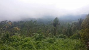Destinasi Wisata Alam, Destinasi Wisata Alam minsel, Puncak Kawiley, gunung Lolombulan