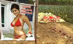 Petani Pasang Poster Wanita Seksi di Ladang Untuk 'Usir' Pencuri