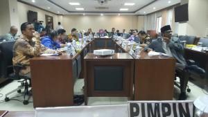 Senator Ir Stefanus BAN Liow saat Rapat Dengar Pendapat