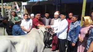 Bupati Mewoh Serahkan Hewan Qurban di Hari Raya Idul Adha