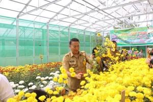 Wali Kota Tomohon dengan Bunga Krisan Riri