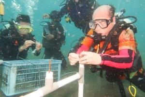 Politeknik Negeri Manado Wisuda 11 Mahasiswa di Bawah Laut