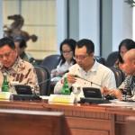Olly Hadiri Rapat Terbatas Yang Dipimpin Presiden Jokowi