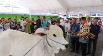 Wali Kota Tomohon Serahkan Hewan Kurban untuk Umat Masjid Nurul Iman