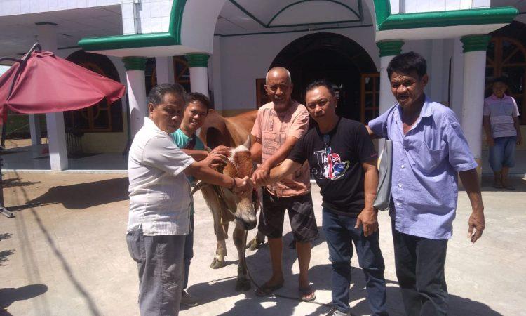 JIPS Salurkan Hewan Kurban di Masjid As-Shalihin Kampung Merdeka Manado