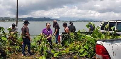 Ir Stefanus BAN Liow MAP bersama jemaat Wilayah Tomohon Empat mengangkat Eceng Gondok