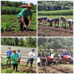 Wali Kota Tomohon Jimmy Feidie Eman SE Ak CA terus mengajak masyarakat menanam mengantisipasi krisis pangan di Pandemi Covid-19